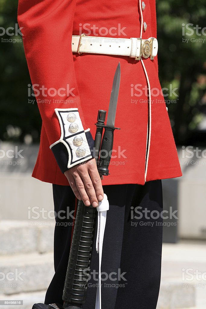 Guard - Hand on Rifle royalty-free stock photo