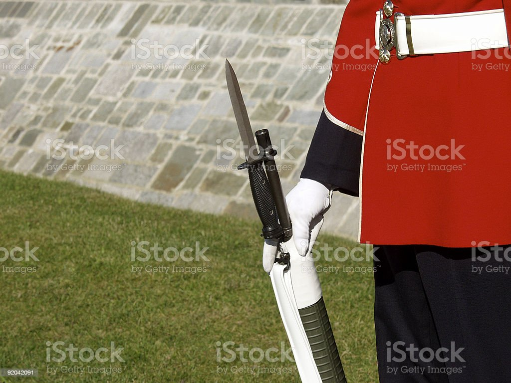 Guardsman's Bayonet royalty-free stock photo