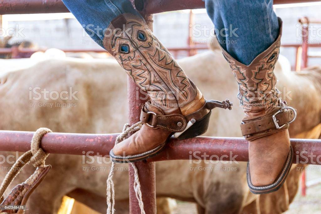 Guatemalan Cowboy on Fence Rail stock photo