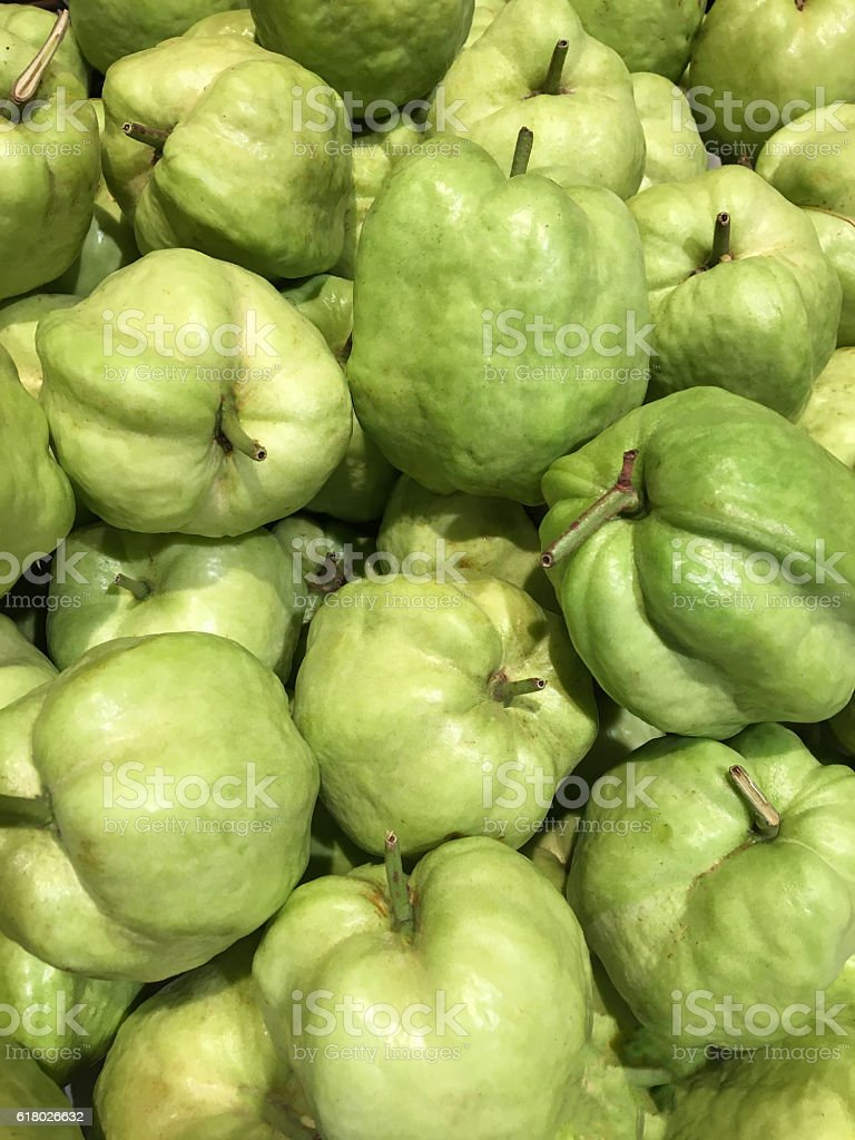 Guava fruitt stock photo