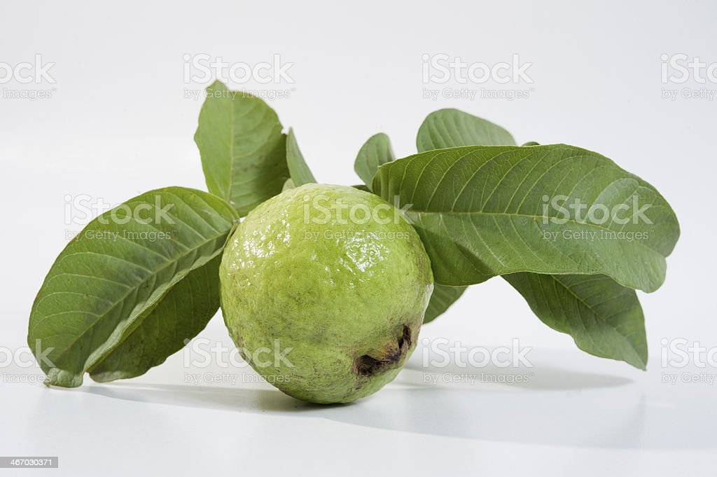 Guava royalty-free stock photo