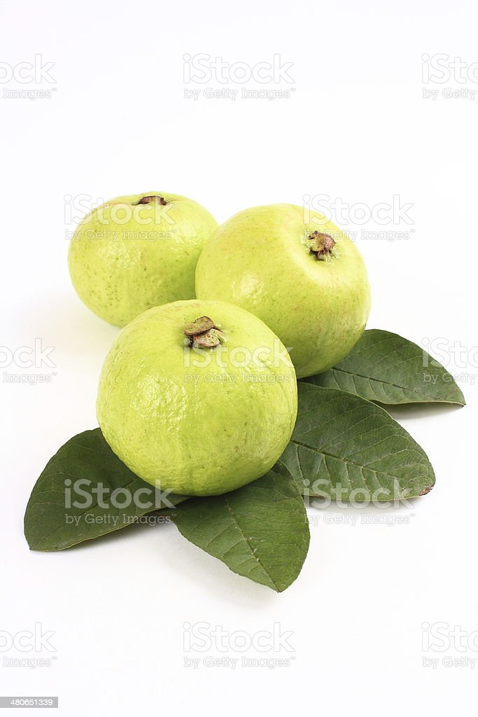 Guavas and leaves stock photo