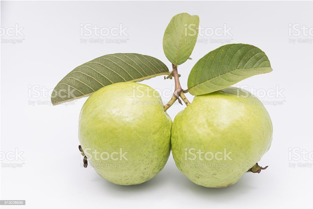 Guavas with leaves on white background stock photo