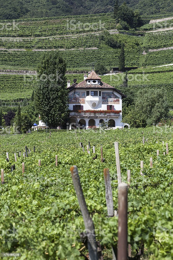 Guest house in the vineyards royalty-free stock photo