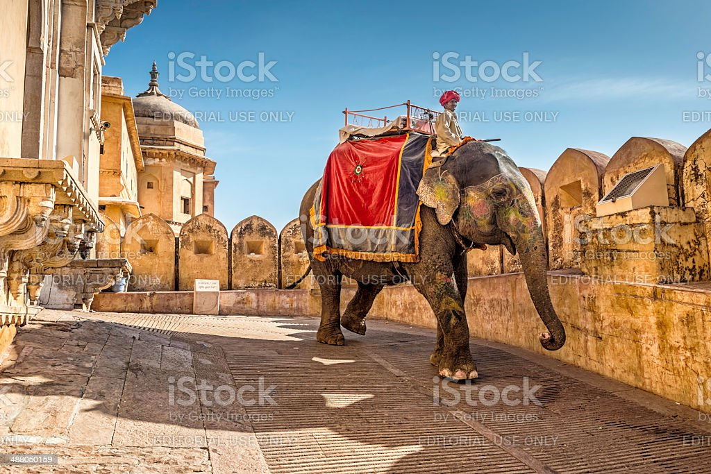 Guide riding his elephant exiting Amber Fort in Jaipur, India stock photo