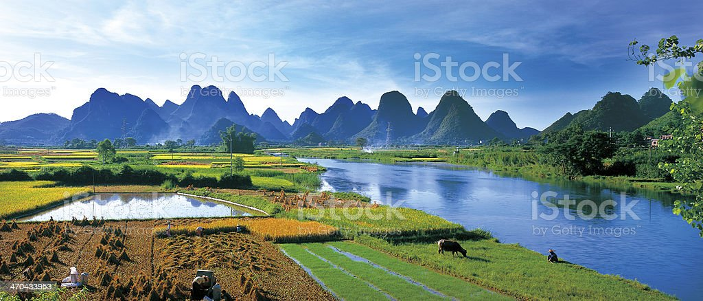 Guilin field stock photo