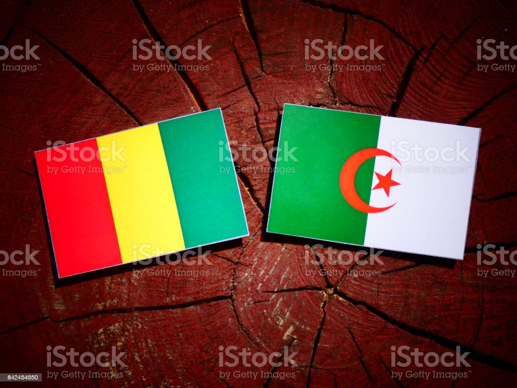 Guinean flag with Algerian flag on a tree stump isolated stock photo