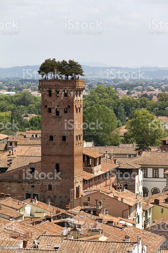 Guinigi tower stock photo