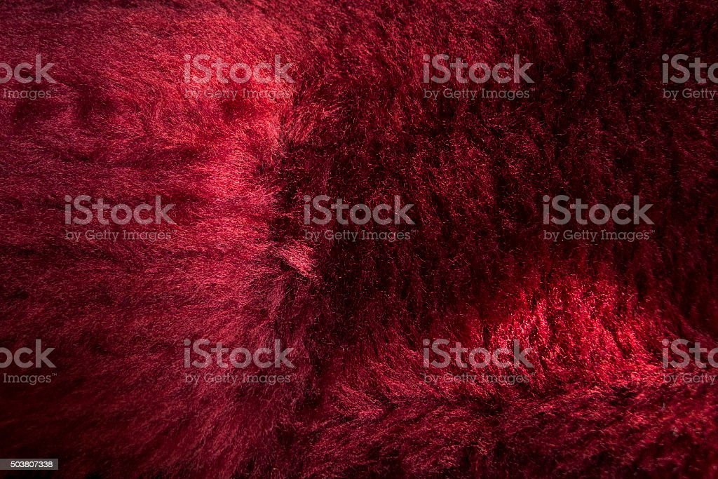 Guitar case red padding stock photo