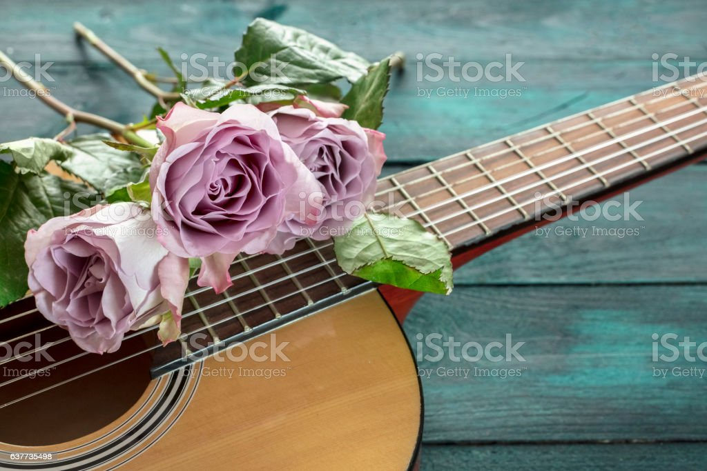 Guitar neck with tender pink roses on dark background stock photo
