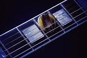 Guitar Pick on Fret-board