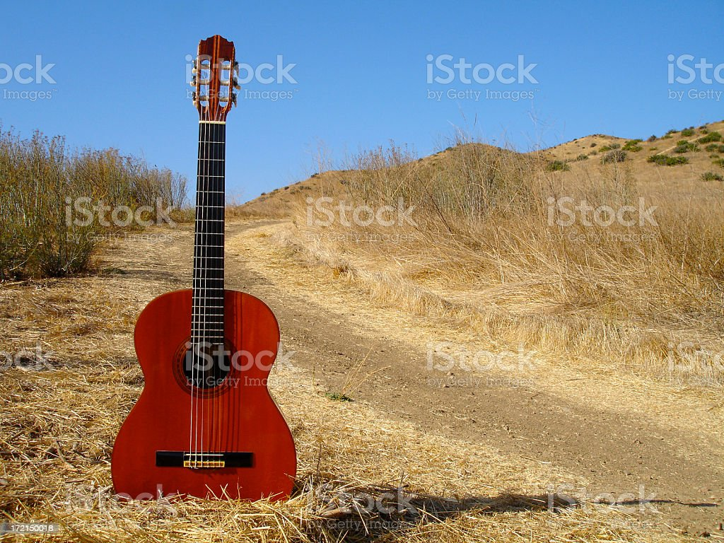 Guitar Series royalty-free stock photo
