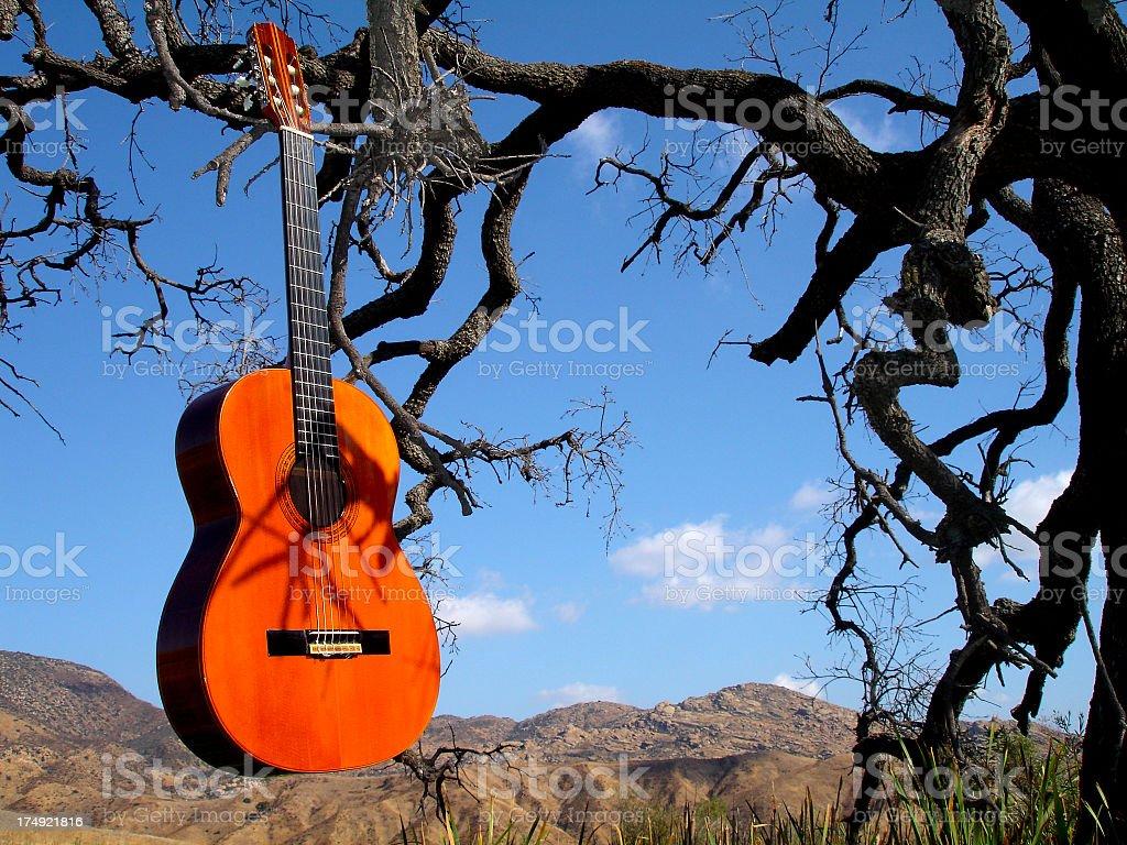 Guitar Series stock photo
