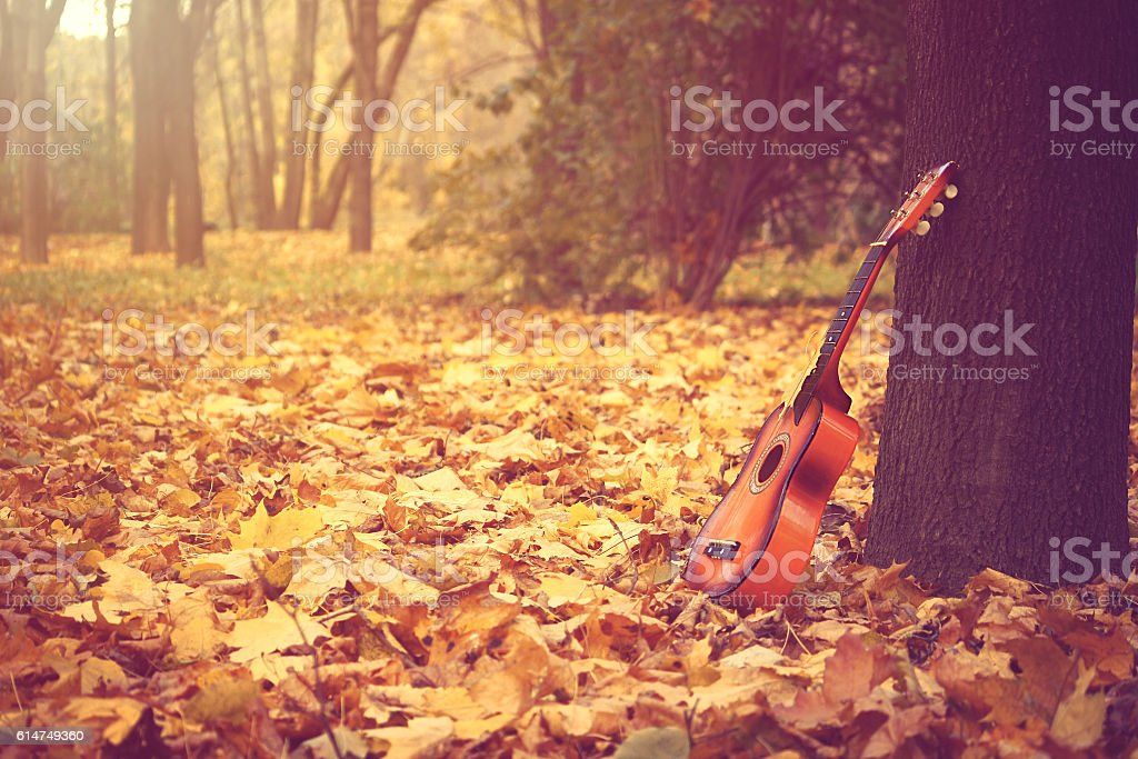 guitar standing by tree in park stock photo