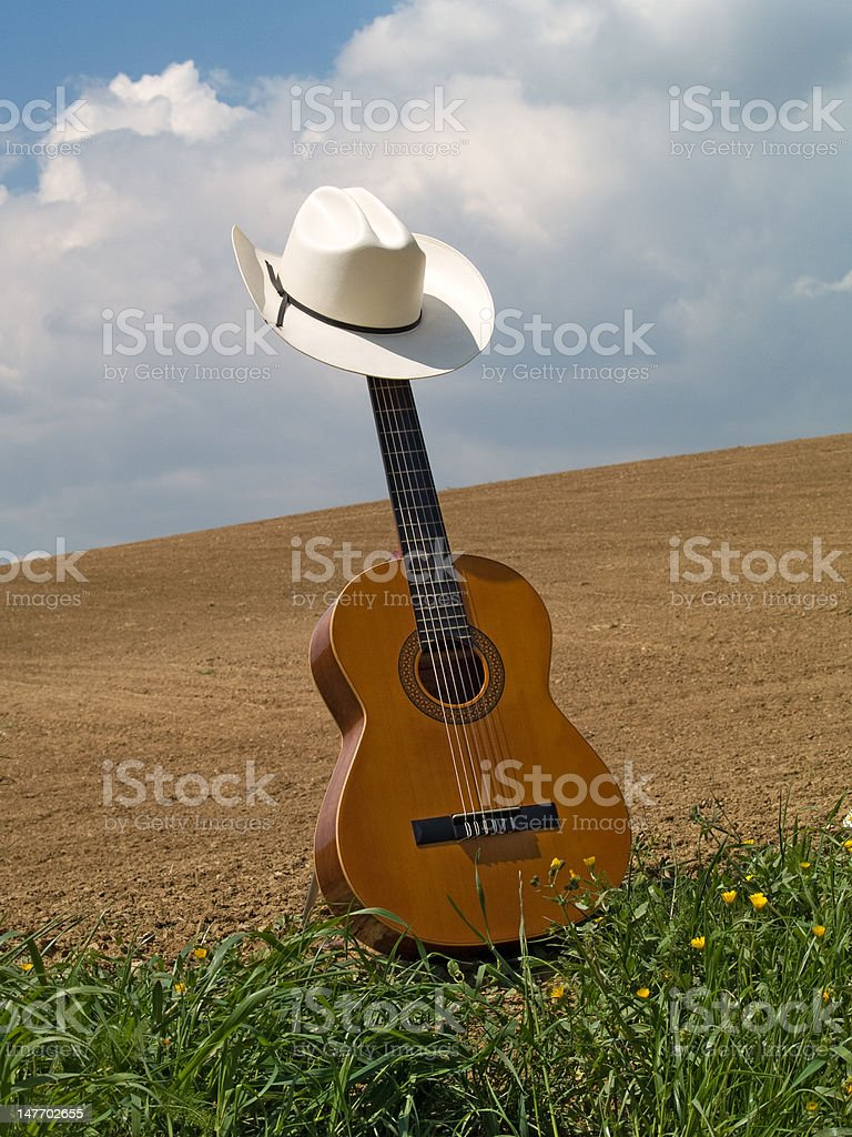Guitar with hat in a field stock photo