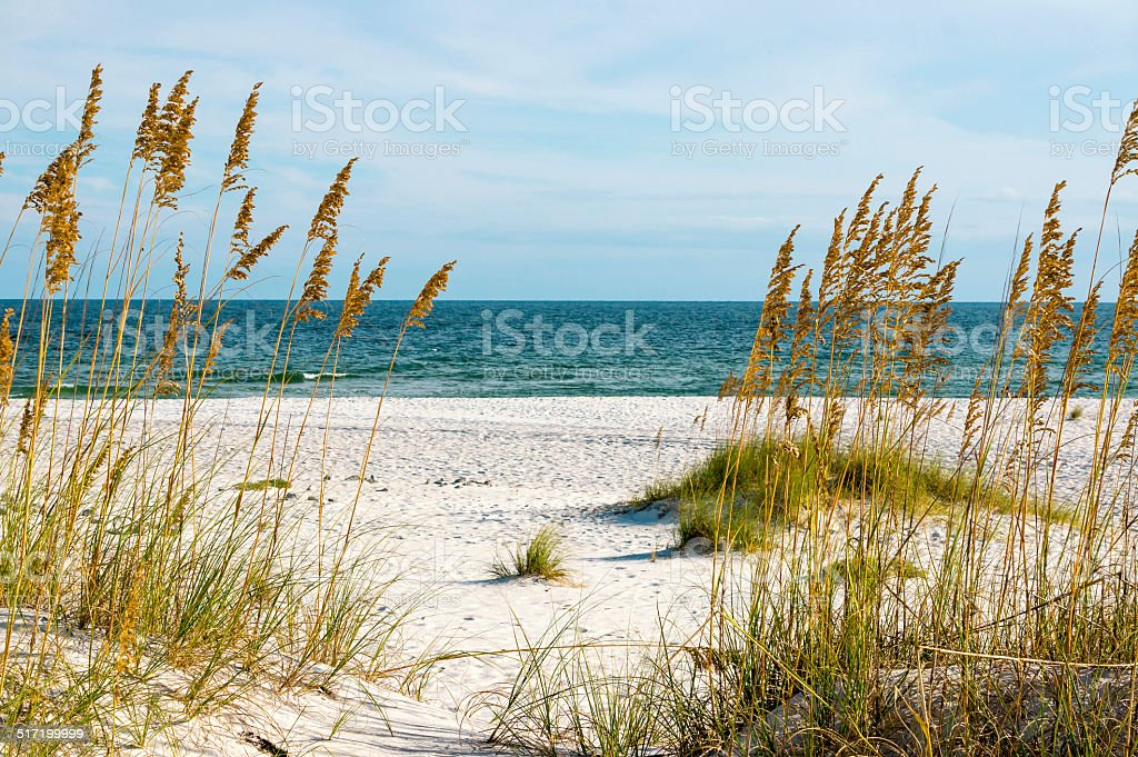Gulf Coast stock photo