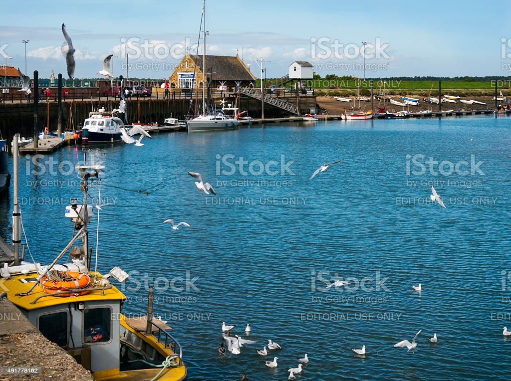 Gulls in the harbour at Wells-next-the-Sea stock photo