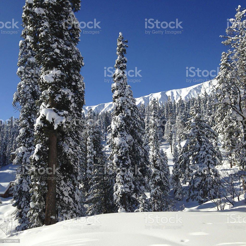 Gulmarg after snowfall stock photo