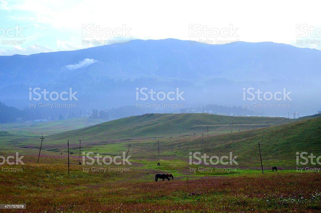 Gulmarg Valley in Kashmir stock photo