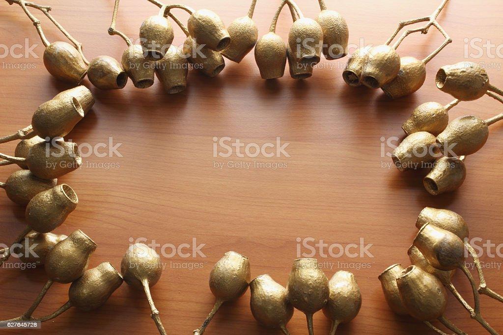Gum Nuts stock photo