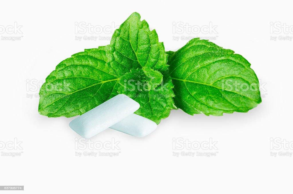 gum stock photo