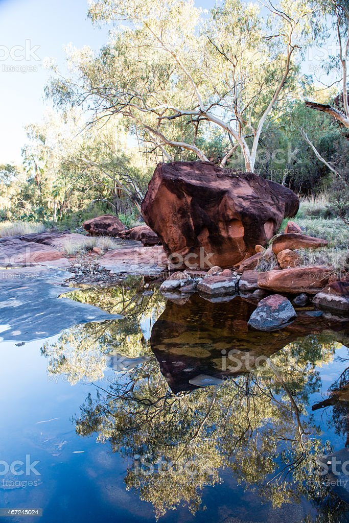 Gum trees reflected in a rock pool stock photo