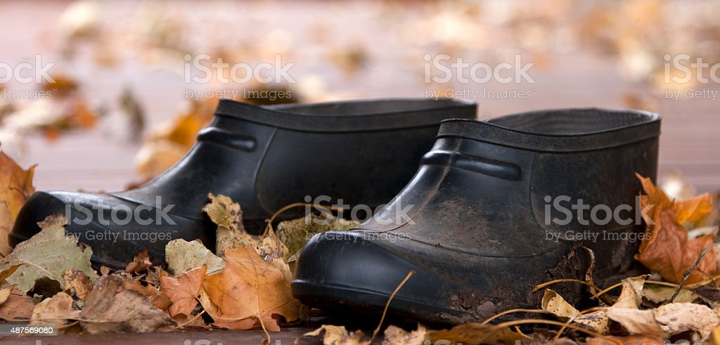 Gumboots royalty-free stock photo