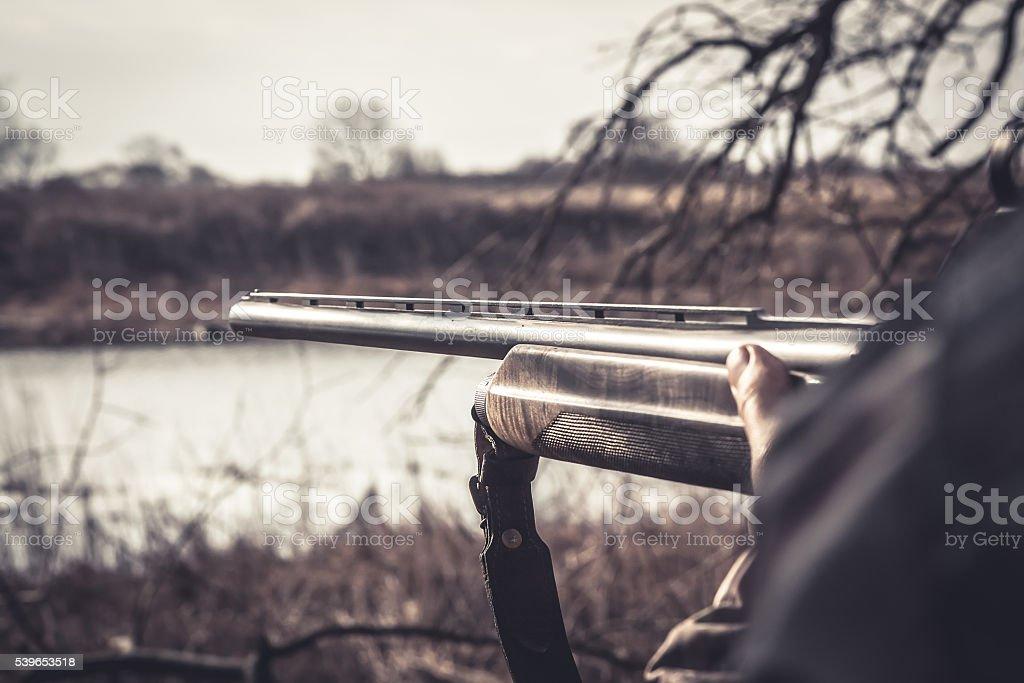 Gun barrel ready to shot during duck hunting season stock photo