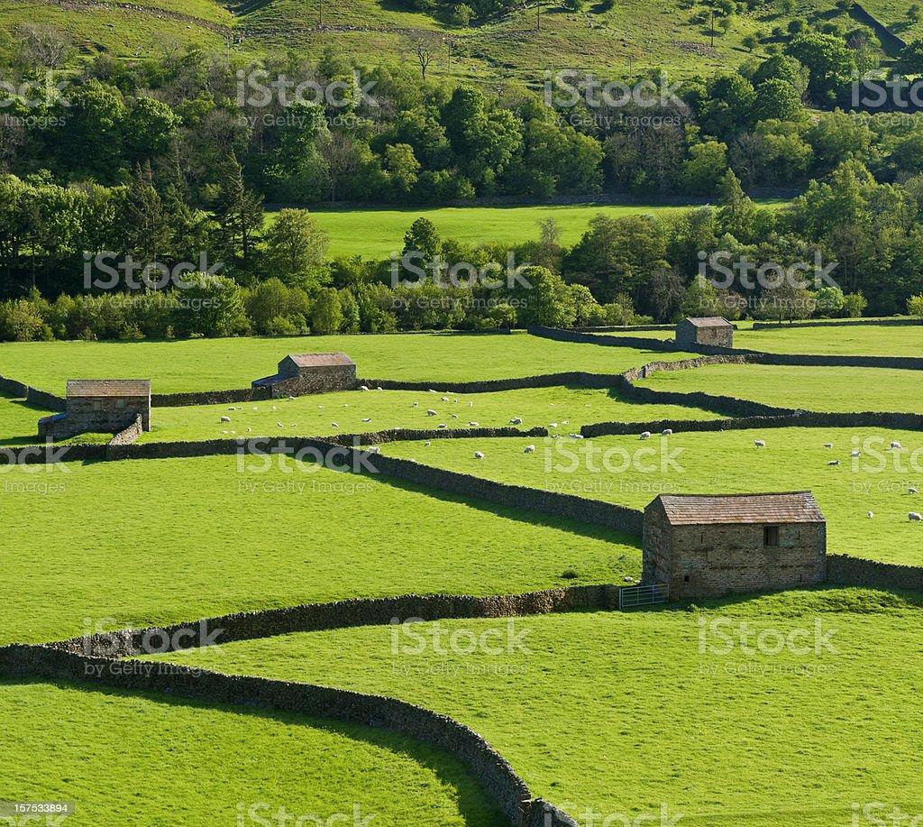 Gunnerside Yorkshire royalty-free stock photo