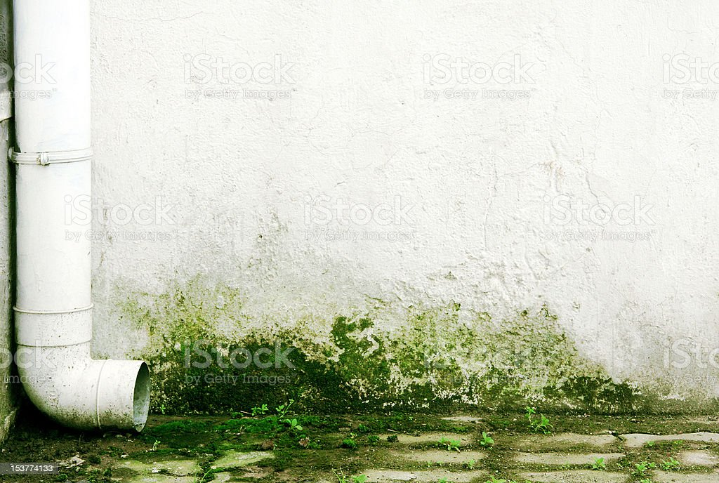Gutter on white wall with mold stock photo