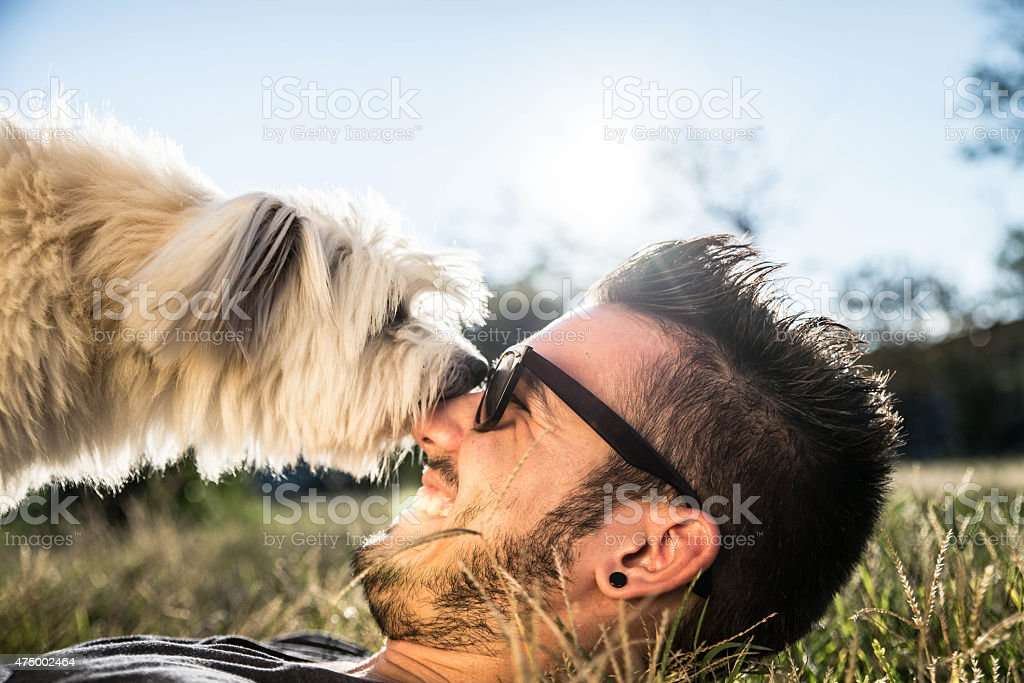 guy plays with his dog on the grass stock photo