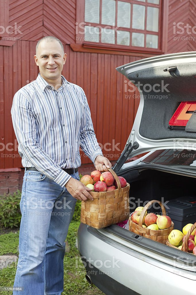 Guy puts apples in the trunk of car royalty-free stock photo