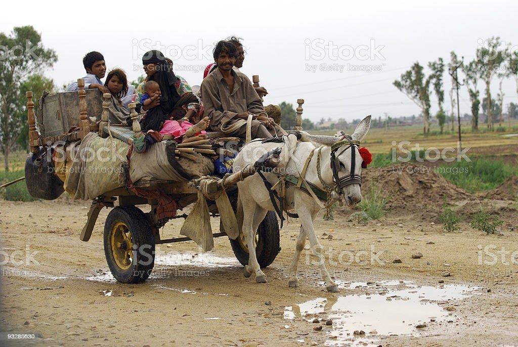 Gypsies on donkey cart royalty-free stock photo