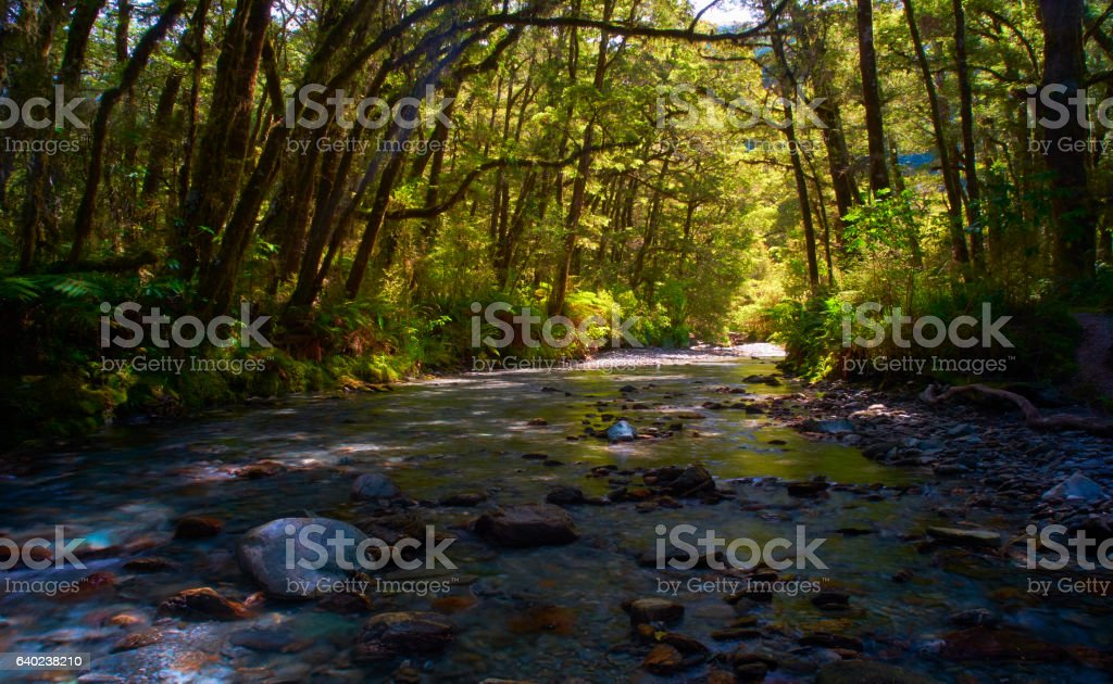 Haast Pass River Scenic, New Zealand stock photo