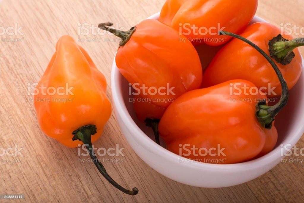 Habanero Pepper stock photo