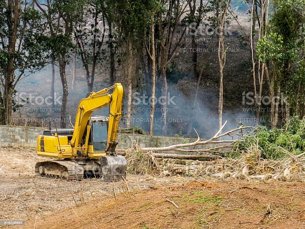Habitat Loss Rainforest Deforestation Digger Fire Forest Clearing stock photo