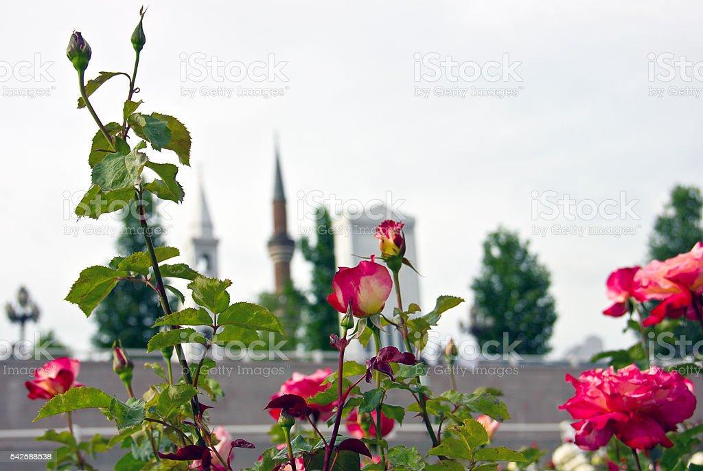 Hacı Bayram Veli stock photo