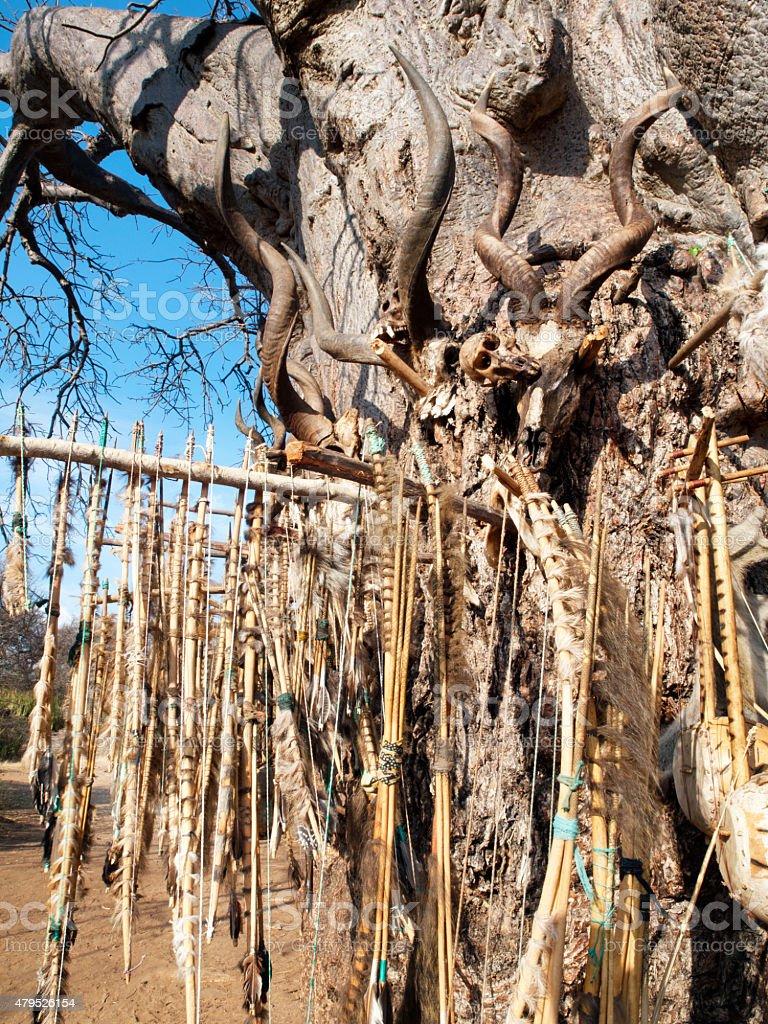 Hadzabe totem baobab tree stock photo