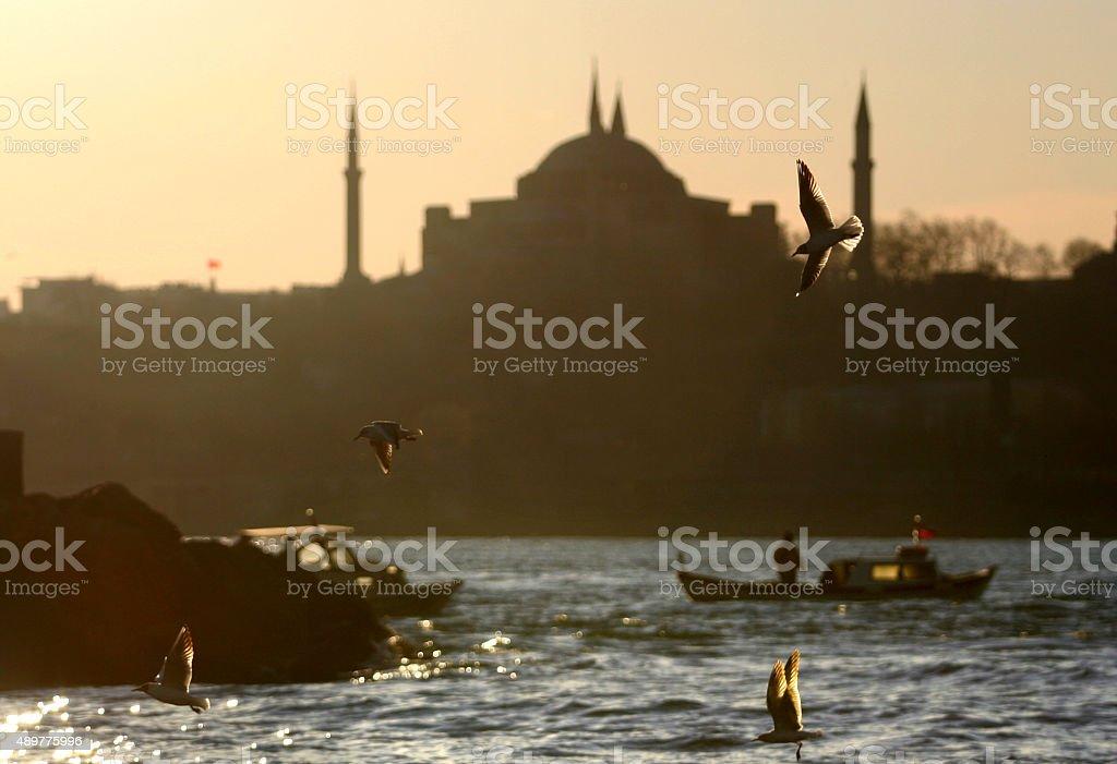 Hagia Sophia Mosque and Istanbul stock photo
