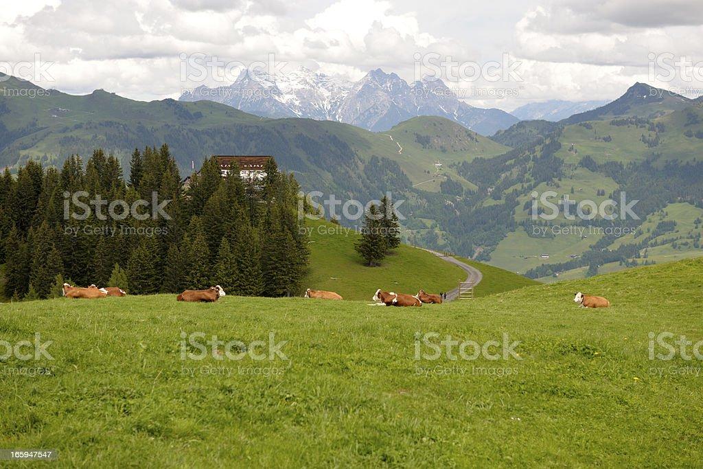 Hahnenkamm in Austria royalty-free stock photo