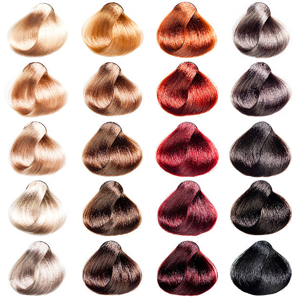 Hair Color Swatch Pictures, Images and Stock Photos - iStock