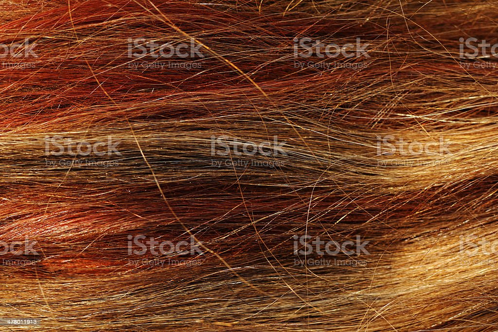 hair texture royalty-free stock photo