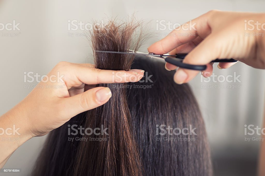 Hairdresser cut hair of woman closeup stock photo
