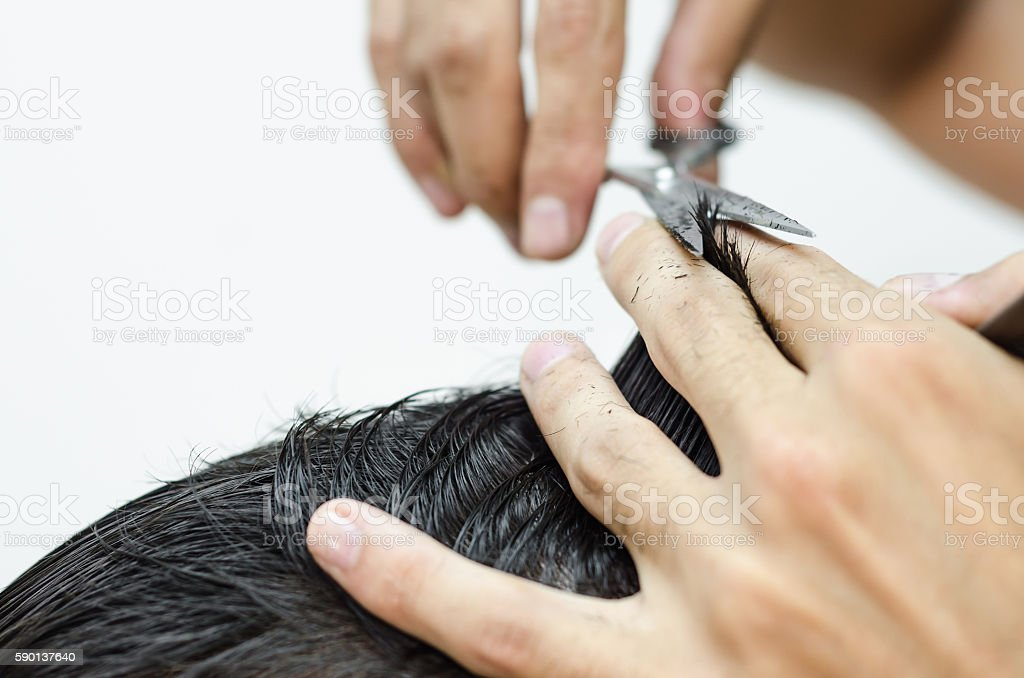 hairdresser cuts a customer piece of hair stock photo
