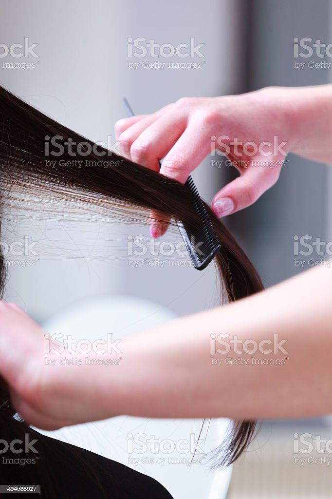 Hairstylist combing hair woman client in hairdressing beauty salon stock photo