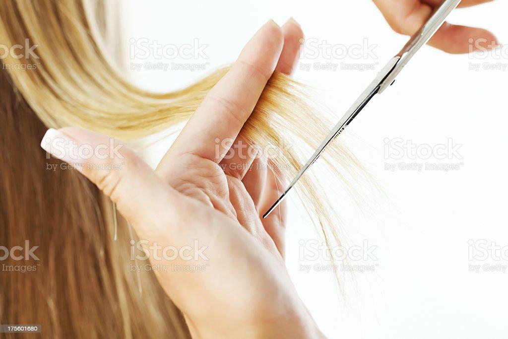 Hairstylist cutting a woman's hair stock photo