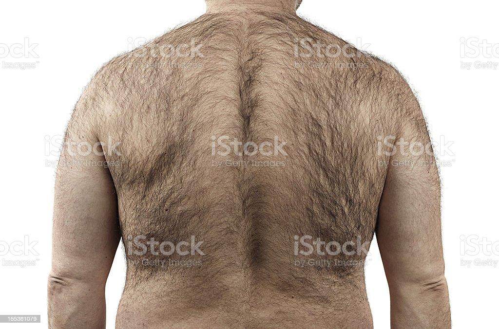 Hairy back royalty-free stock photo