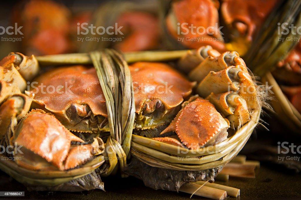 Hairy crabs (???) stock photo