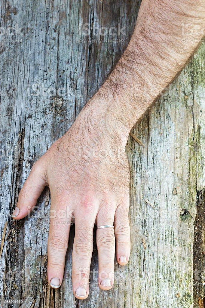 Hairy hand of white man stock photo