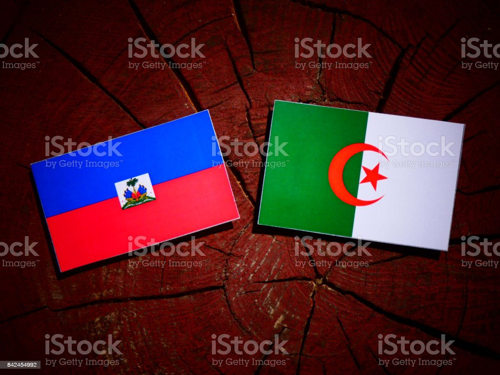 Haiti flag with Algerian flag on a tree stump isolated stock photo